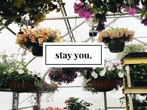 stay you.